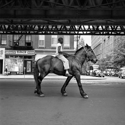 horse, vivian maier,